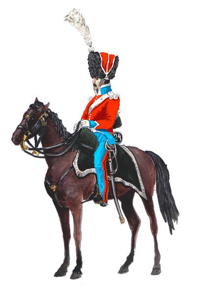 Полка в походной форме 1812 год